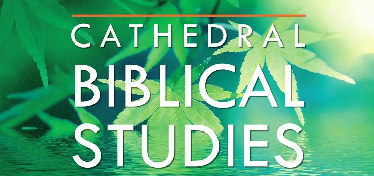 Cathedral Biblical Studies Term 2
